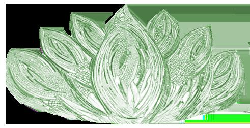 lotus cropped